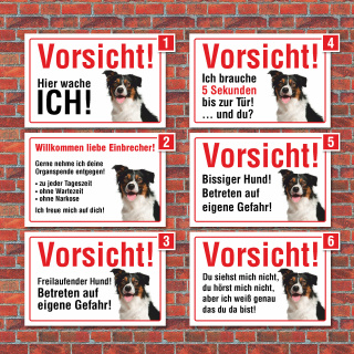 """Vorsicht """"Hier wache ich"""", Border Collie, Hund, Schild, Hinweis, 3 mm Alu-Verbund"""