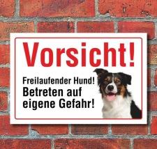 """Vorsicht """"Freilaufend"""", Border Collie, Hund,..."""