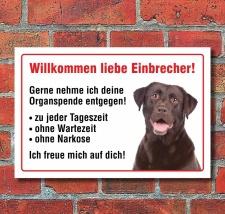 """Vorsicht """"Willkommen"""", Labrador, Hund, Schild,..."""
