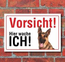 """Vorsicht """"Hier wache ich"""", Schäferhund,..."""