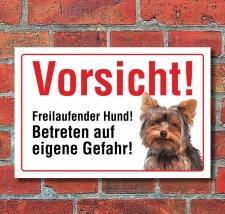 """Vorsicht """"Freilaufend"""", Yorkshire Terrier,..."""