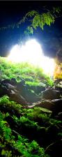 """Türtapete """"Höhle"""", Türposter, selbstklebend 2050 x 880 mm"""