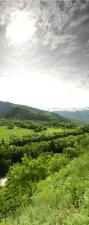 "Türtapete ""Grüne Landschaft"",..."