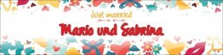 """Banner Plane """"Hochzeit 4"""" Geschenk Feier Just married Hochzeitsdeko mit Ösen"""