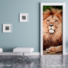 "Türtapete ""Löwe, Tier"", Türposter, selbstklebend 2050 x 880 mm"