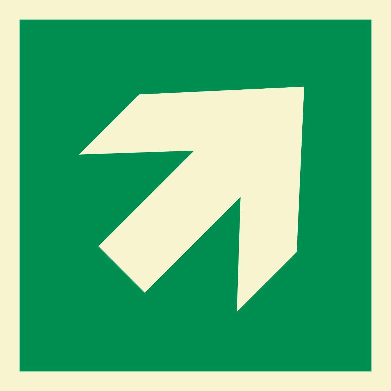 Pfeil 45° Rettungszeichen Rettungswegschild Schild