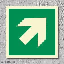 Pfeil 45° Rettungszeichen Rettungswegschild Schild Nachleuchtend ASR A1.3