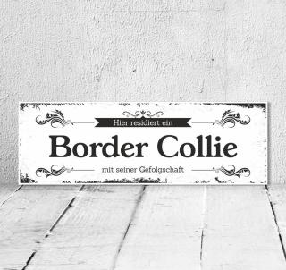 Schild Vintage Shabby Geschenk Holzschild Hundeschild Border Collie Türschild