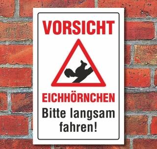 Schild Vorsicht Eichhörnchen Bitte langsam fahren Hinweisschild 3 mm Alu-Verbund