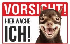 Schild Vorsicht Hier wache ich Chihuahua Hund Geschenk 3...