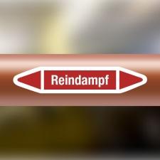 Rohrleitungskennzeichnung Aufkleber Etikett Reindampf DIN 2403 Dampf
