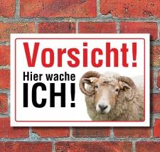 Schild Vorsicht hier wache ich Schaf Hinweisschild...