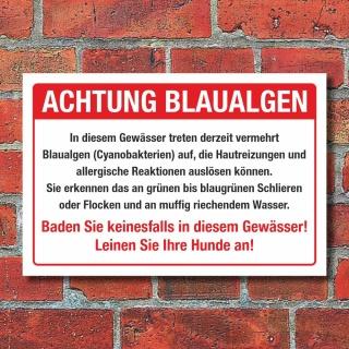 Schild Achtung Blaualgen Baden verboten Hunde anleinen 3 mm Alu-Verbund